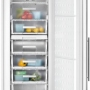 Двухкамерный холодильник Teka TGI2 200 NF
